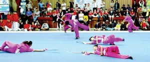 Federation of Wushu, Dragon and Lion Dance of Perak
