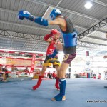 Muaythai Fit Warrior (Northern Zone)