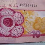 Peraks Rafflesia on New Banknote